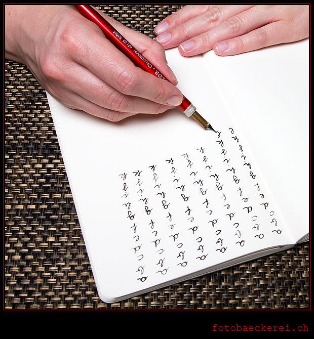 Tag 133 Projekt 365 Hausaufgabe Handschrift Tusche Feder