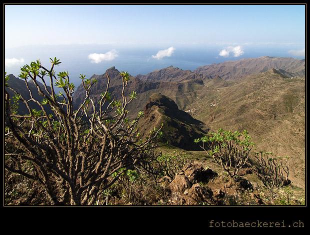 Tag 320 Projekt 365 Blick vom Pico Verde auf Masca