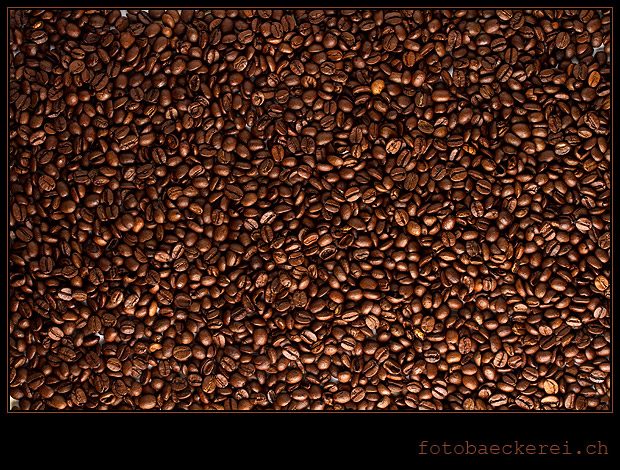 Tag 337 Projekt 365 Kaffeebohnen