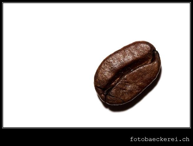 Tag 344 Porjeckt 365 Kaffeebohne